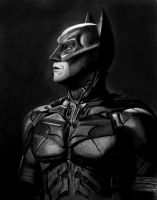 The Dark Knight by FrankGo