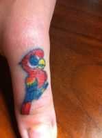 Thumb Parrot by MistryssC