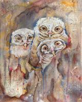 The Owls Are Not What They Seem VI by bedowynn