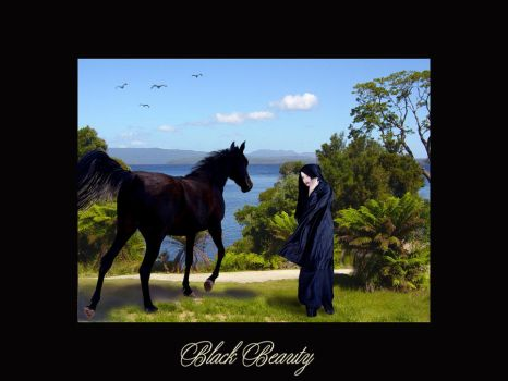 BlackBeauty by chark-o-broiled