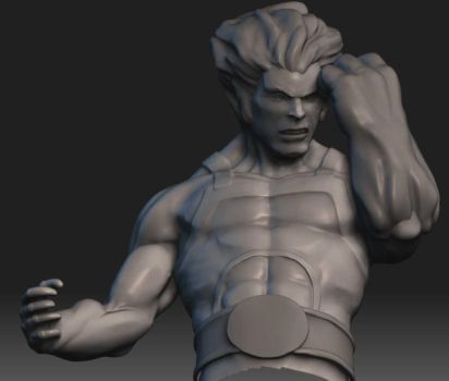Lion_Wip zbrush2 by renatothally