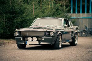 Shelby GT 500 by hombre-cz