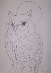 Owl by yesyes5