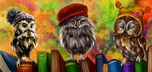 owls and books by Gekata23