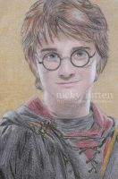 Harry Goblet of Fire by ChazyChaz