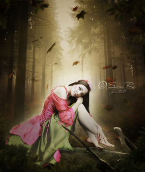 A Place to Day Dream by SenaRe