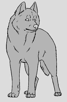 Dog Template - Husky by NaruFreak123-Bases