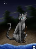 Jayfeather by stories-of-heroes