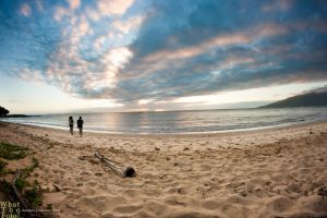 At The Beach by AndrewZissou