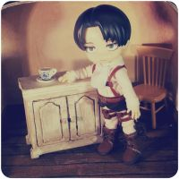 Rivaille Ackerman Doll by melina-m