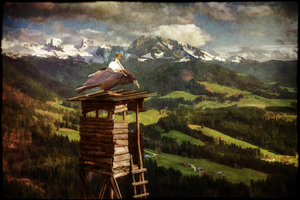 The Lookout by 99shadows