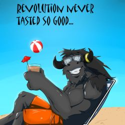 VIVA LA REVOLUTION by lonelion4ever