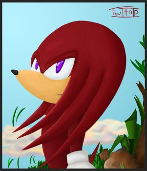Knuckles by Twitnip