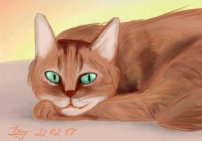 Ginger cat by KarCrystal