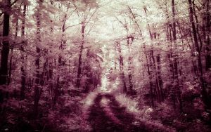 Infrared Trees - pt. VI by myINQI
