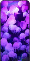 Purple Jellyfishes by MissToxicSlime