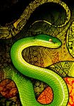 White-Lipped Pit Viper by Culpeo-Fox