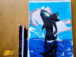 Killer Whale Color Drawing(#SyedArt) by SyedTheArtist