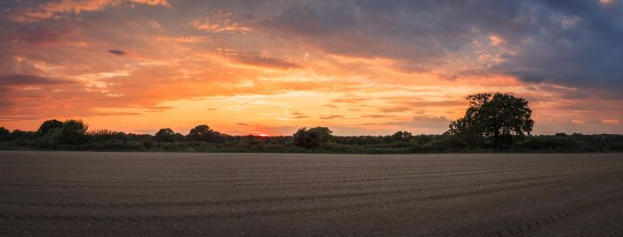 Ploughed Field by snomanda