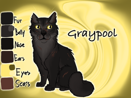 Graypool of RiverClan - A Dangerous Path by Jayie-The-Hufflepuff