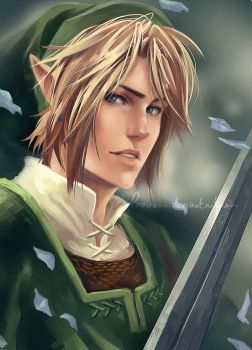 Twilight Princess - Link by Laovaan