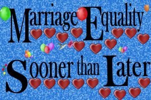 MARRIAGE EQUALITY 1 by Furrymuscle