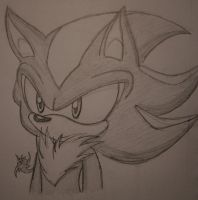 Shadow The hedgehog's face XD by Sweet-Coffey