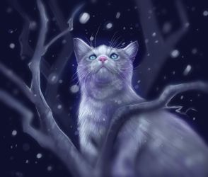 Ghost Cat by Followthepaws