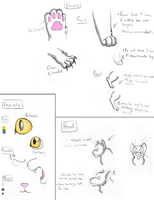 Cat Tutorial by Ask-2PChinacat