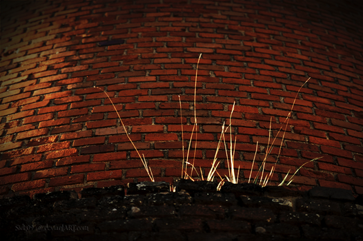 Brickyard 4 by sidh09