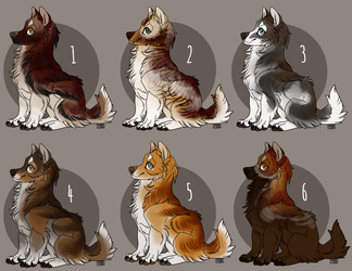 Wolf Adopts [5/6 OPEN] by Phinnyboy