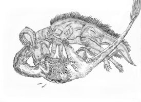 Protoceratops and Velociraptor by Durbed