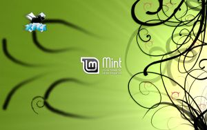 LMDE wallpaper for XFCE by nacsasoft