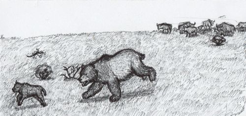 MIS 5a hunt by AnonymousLlama428