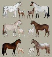 Horse Adopts - Mare/Foal set by decors