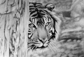 The Tiger by EruwenRose