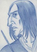 Servant of the Dark Lord ACEO by acatnamedeaster