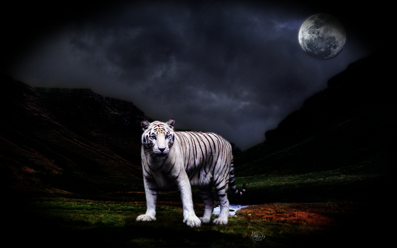 The White Huntress: Background by Katemonster09
