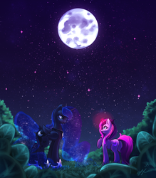 Commission: Arranging Stars by Seyllah