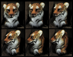 Tiger Head by FeralFacade