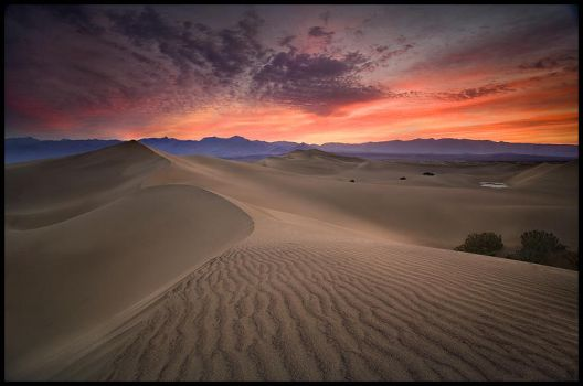 Desert Light by MarcAdamus
