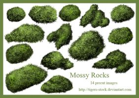 277Mossy Rocks by Tigers-stock