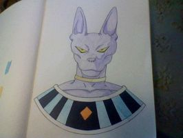 Beerus by Shadow--Force
