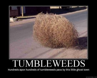 Tumbleweed demotivational post by grifkuba