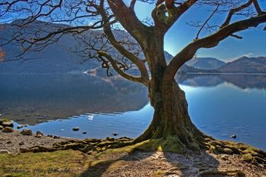 Ullswater Morning by Rebacan