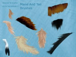 Mane And tail BRUSHES by Graphicandhorselvr