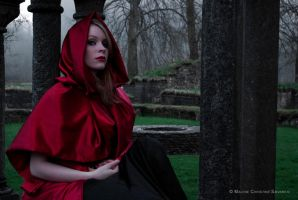 Evil Little Red Riding Hood by malsev