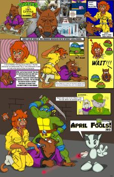 TMNT vs. The LoLCat-Woman from Channel Six by oldmanwinters