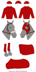 Turfside Racing Silks by Wild-Heart-Stables