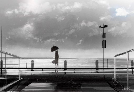 Before the storm by PascalCampion